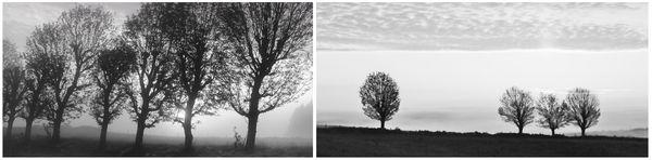 #7 La poésie … sur le thème du mois d'avril … pour continuer à rêver, à respirer, à aimer, à crier… Vivre !