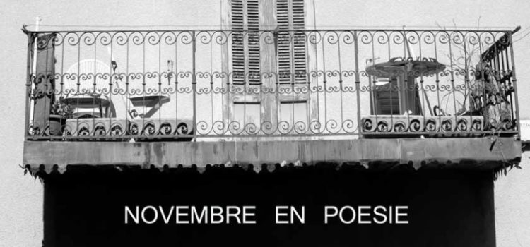 «Ombre et lumière» thème du mois de novembre de l'apéro-poétique confiné!