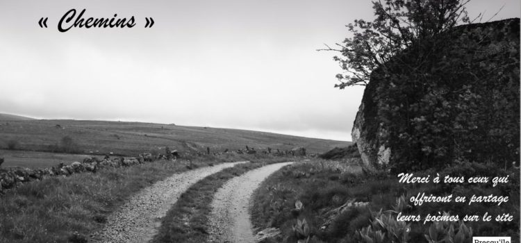 «Chemins» thème de l'apéro-poétique du mois de mai, vers d'autres horizons !